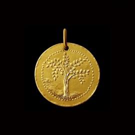 Olive tree of life